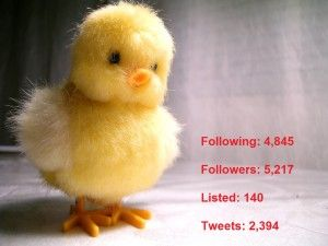spam-en-twitter