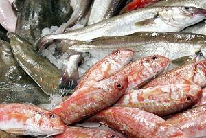 pescaderia-online