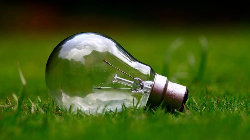 ideas de negocios ecológicos