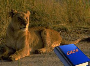 si-las-leonas-supieran-leer