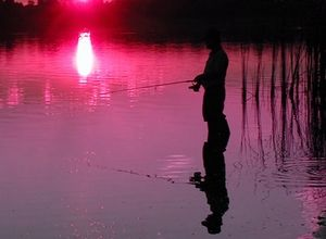 ensenar-a-pescar