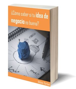 ebook idea de negocio