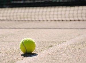 pelota tenis