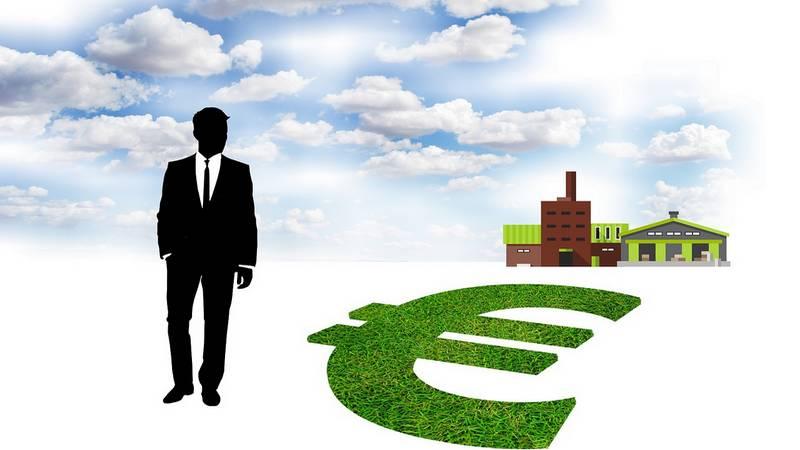 ejemplos de empresas ecológicas