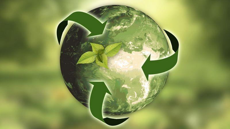 ideas de negocio con reciclaje